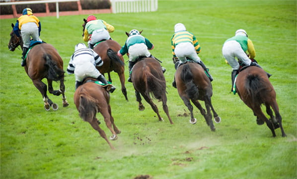 Horse racing on a grass track