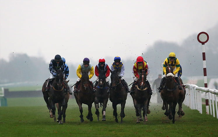 Horses racing to the finish in the Peter Marsh Chase