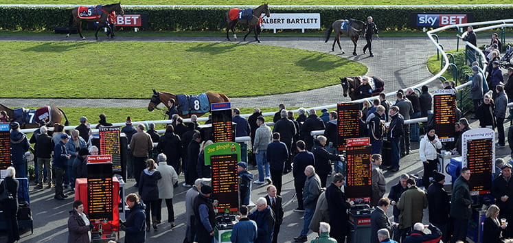Horses before the race at Doncaster