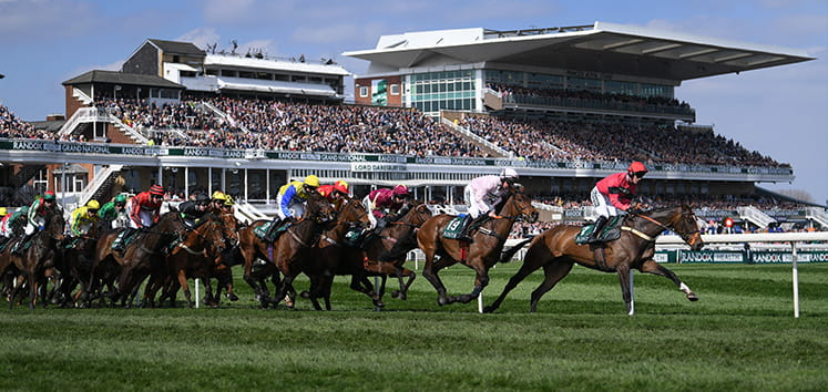 Side shot of lots of horses racing at Aintree
