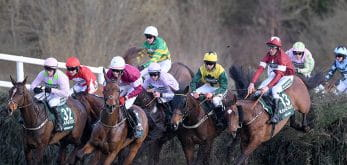 Horses in the Grand National
