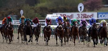 Horses in a race at Lingfield