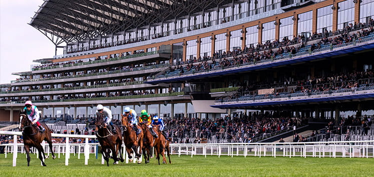 Horses rounding a bend at Ascot