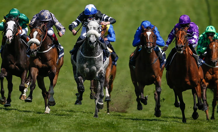Horses racing to the finish at Epsom