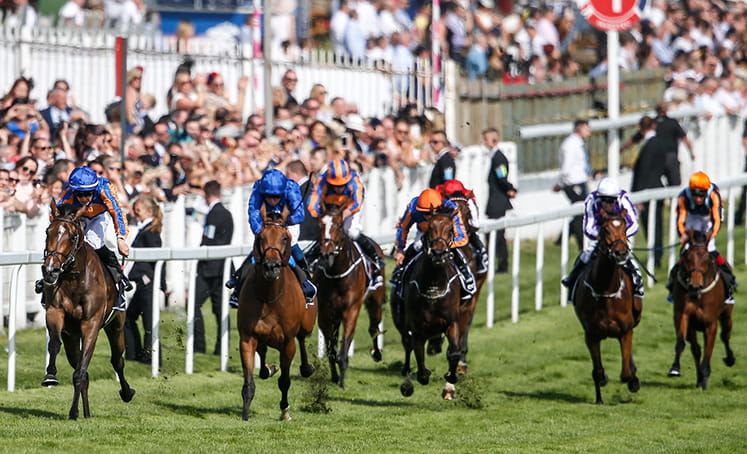 Head on shot of horses racing at Epsom