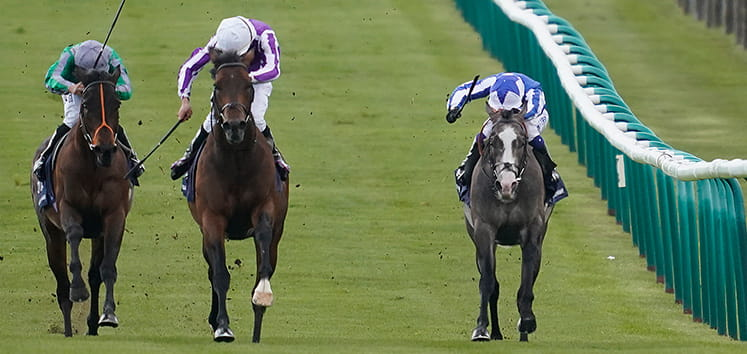 Three horses racing in the 200 Guineas