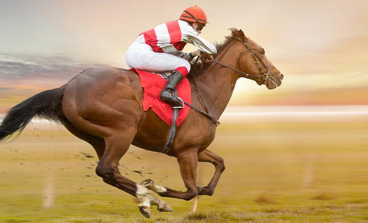 kuda berlari