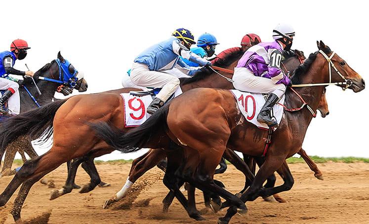 gambar pacuan kuda