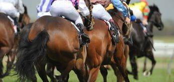 horses on racetrack