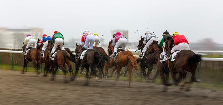 horses with jockey