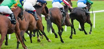 horse race riders