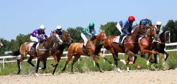 several horses racing