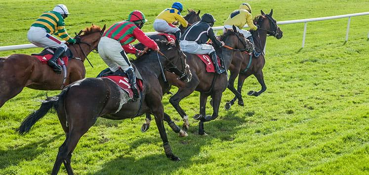 English horses racing