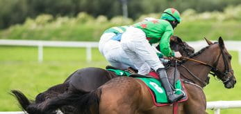 horse racing flat