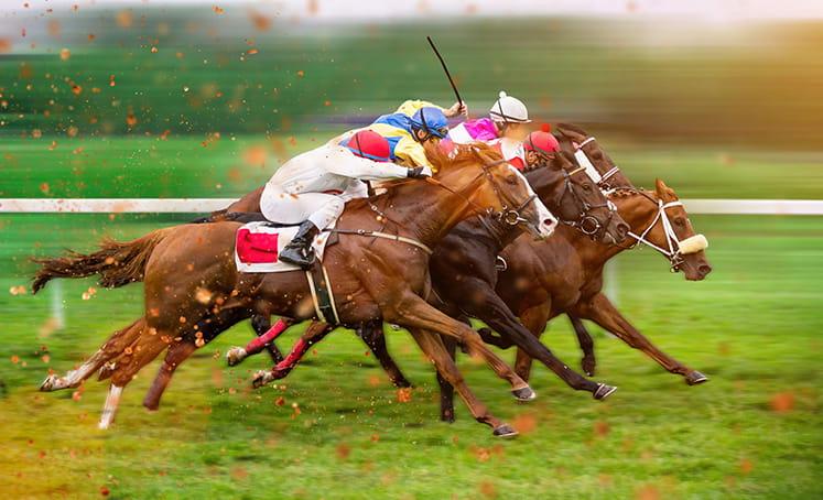 empat kuda berlari