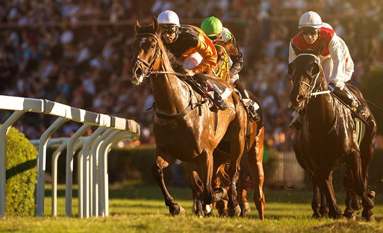 tiga kuda di trek balap