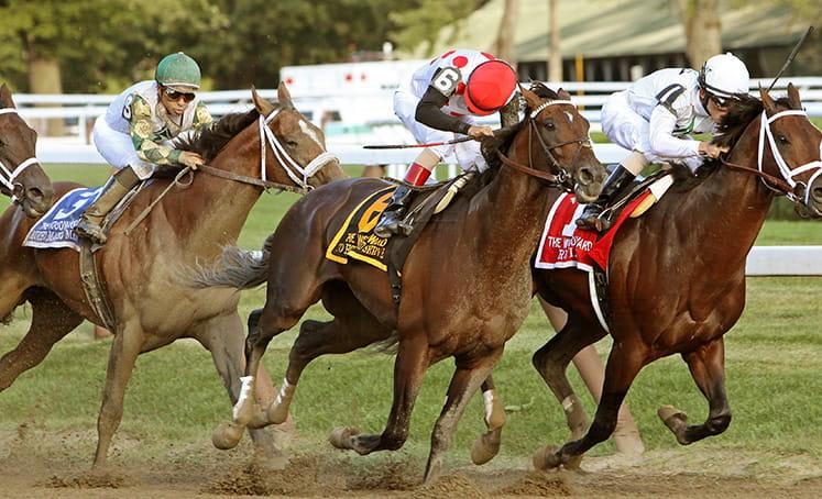 kuda berlari di lintasan