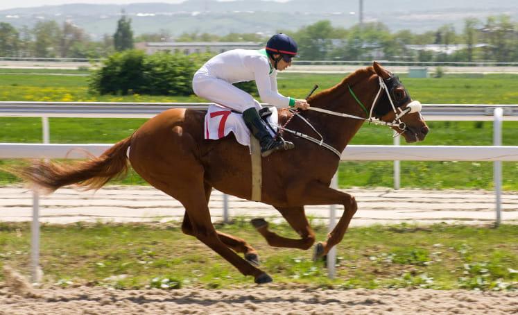 Pacuan kuda Inggris