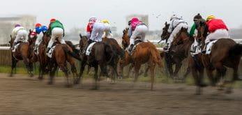 horses with jockeys
